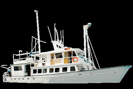 Golondrina Galapagos Yacht - Thumbnails