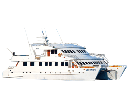 Anahi Galapagos Catamaran - Thumbnails