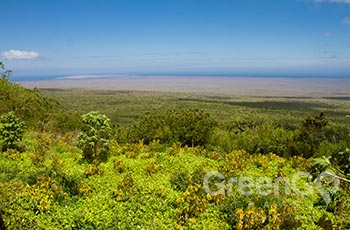 Cerro Mesa - Galapagos