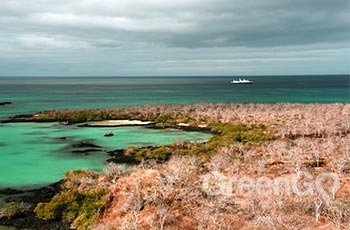 Baroness Lookout - Galapagos
