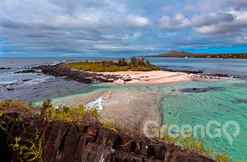 Floreana Island - Galapagos