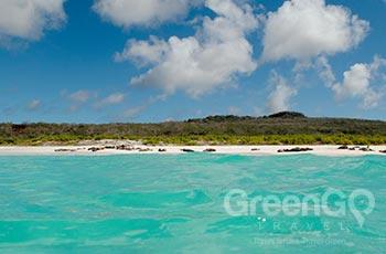 Gardner Bay - Galapagos