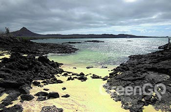 Whale Bay - Galapagos