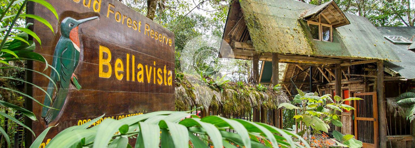 Bellavista Cloudforest Reserve
