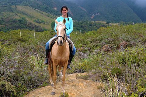 horseback riding ecuador day tour greengo travel