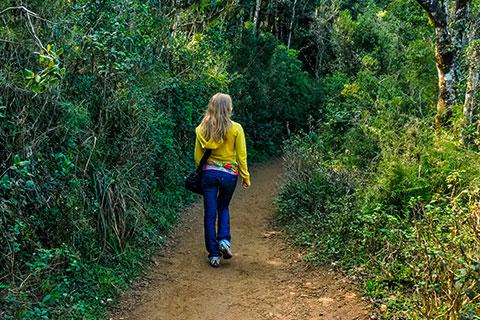 Mindo Rush Rates 2018 & Mindo Rush: Ecuador Day Tour - GreenGo Travel