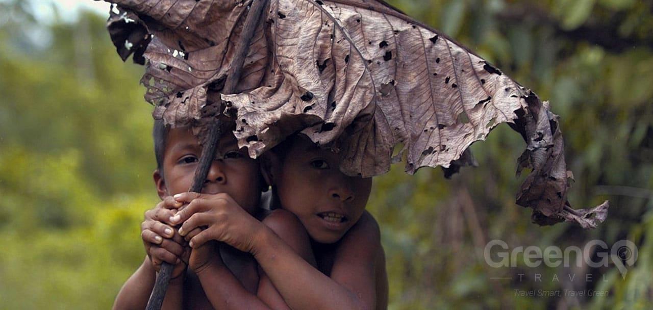 Huaorani Ecolodge Amazon Rainforest Greengo Travel