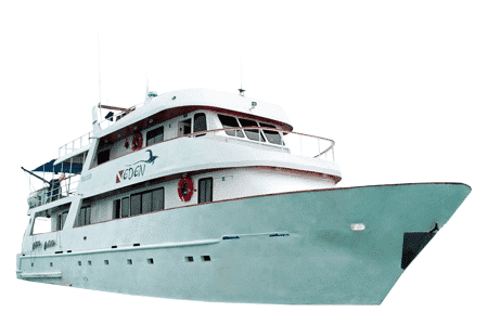Eden Galapagos Yacht - Thumbnails