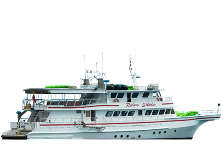 Reina Silvia Galapagos Yacht Thumbnails