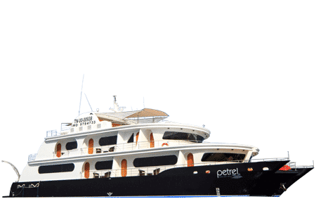 Petrel Galapagos Catamaran - Thumbnails