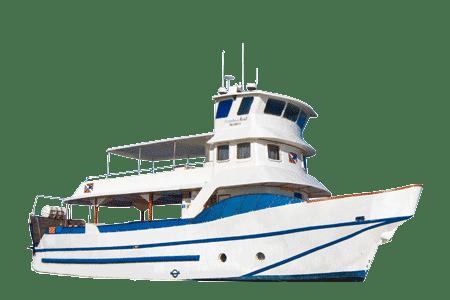 Danubio Azul Galapagos Yacht - Thumbnails