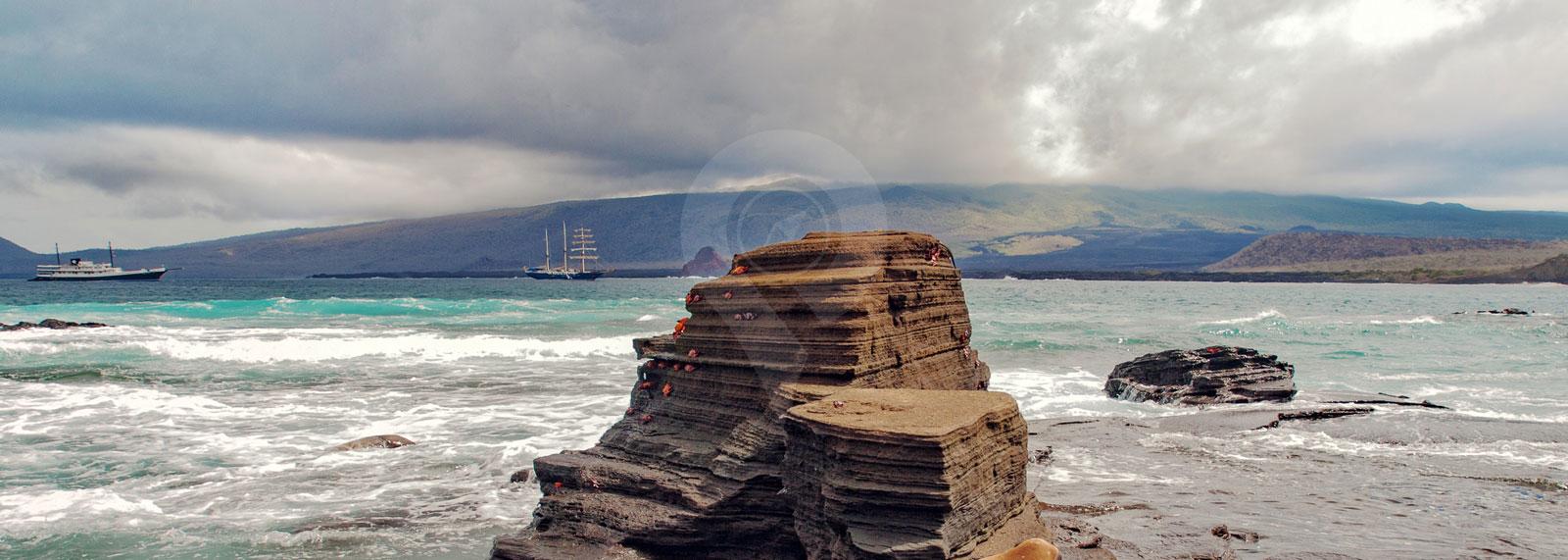 Galapagos Cruise Reviews