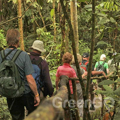 Ecuador-Amazon-cruise--activities