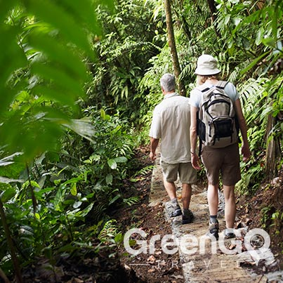 5 best hiking trails in ecuador Yasuni