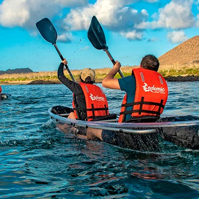 endemic galapagos cruise in 2019-glass-kayaks