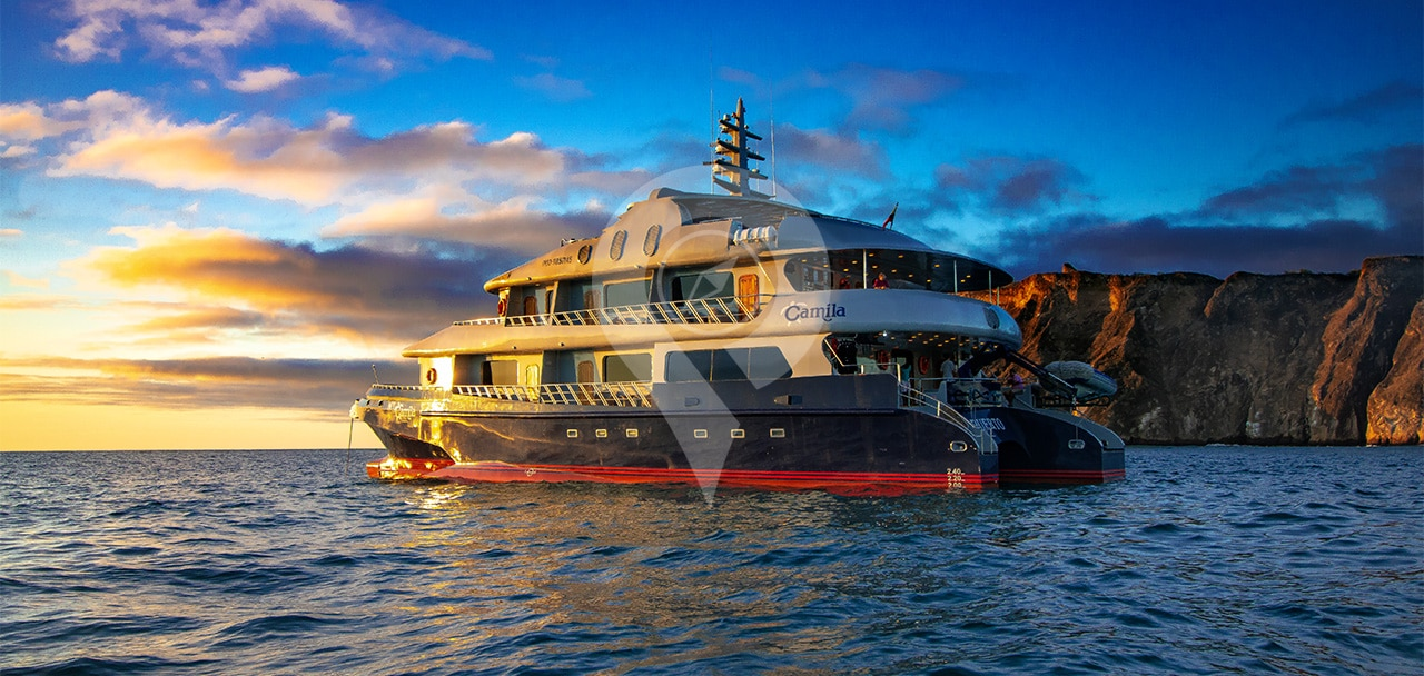 Camila Cruise Specifications and Comforts - Camila front angle