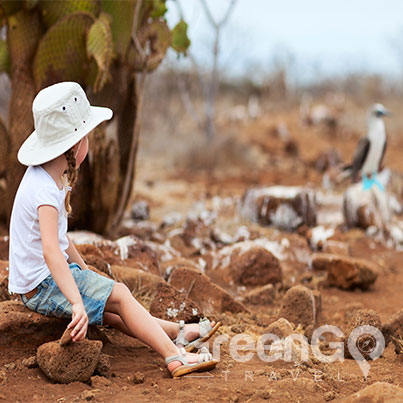 galapagos-cruises-for-families -Little girl staring at blue footed booby in galapagos