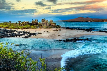Galapagos-Trip-Costs---Galapagos-Islands-photo