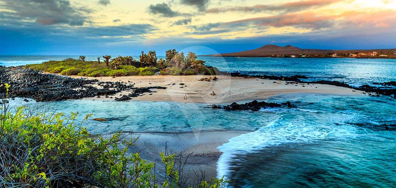 Galapagos-Trip-Costs---Galapagos-Islands-photo