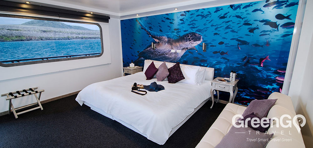 Highlights-of-the-Camila-Galapagos--Double-Cabin-2