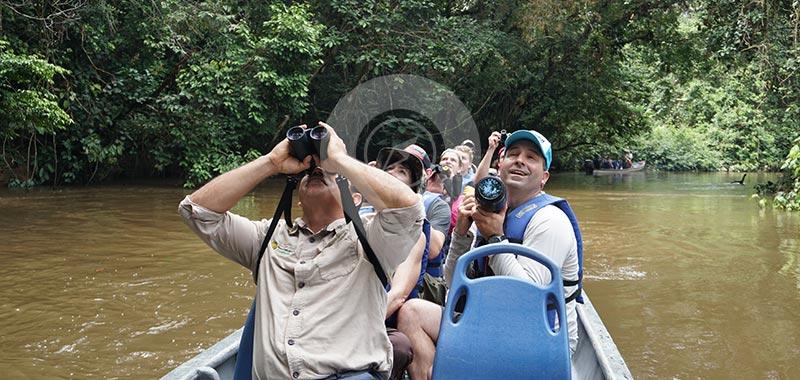 Piranha Amazon Lodge - Day 2