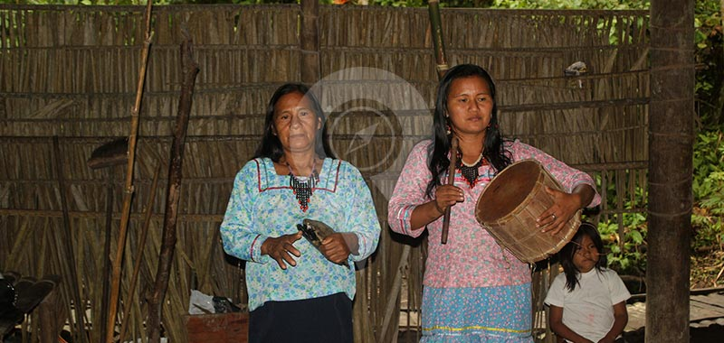 Manatee Amazon Explorer - Day 3