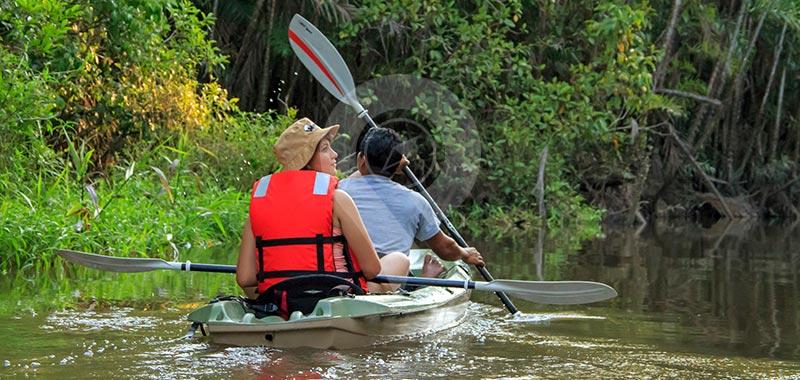 Manatee Amazon Explorer - Day 5