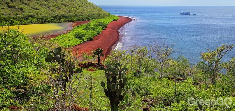 Why-Go-to-the-Galapagos-Islands-Rabida-Island